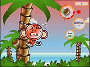 Click to Play Cocoon Island