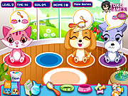 Click to Play Pet Shop Caring