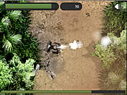 Click to Play Jungle Defense