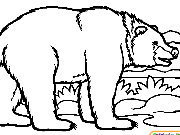 Click to Play Coloring Bears -1