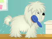 Click to Play Cutie Pet Care