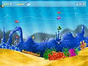 Click to Play Feeding Fish