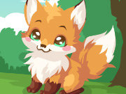 Click to Play Fox Care