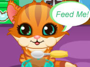 Click to Play My Kitty Care