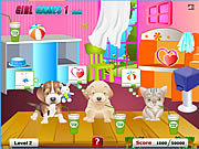 Click to Play Pet Care