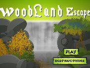 Click to Play Woodland Escape