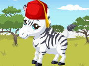 Click to Play Zebra Care